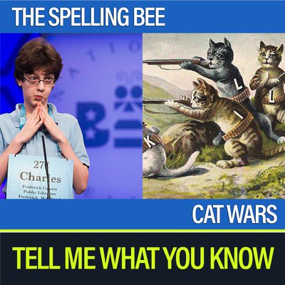 Spelling Bee and Cat Wars.jpg